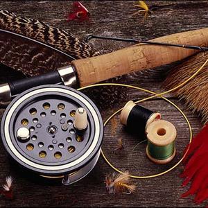 Охотничьи и рыболовные магазины Выползово